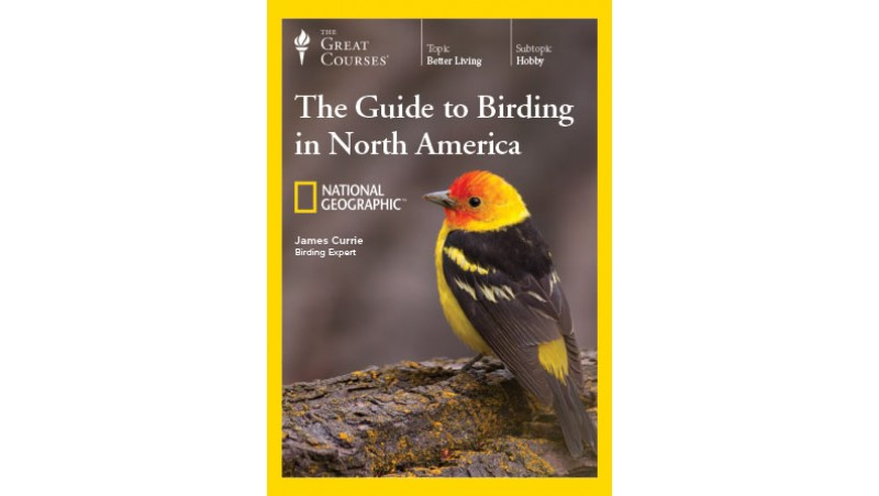 Birding Great Courses cover