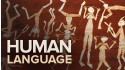 story of human language-stylized human on red background