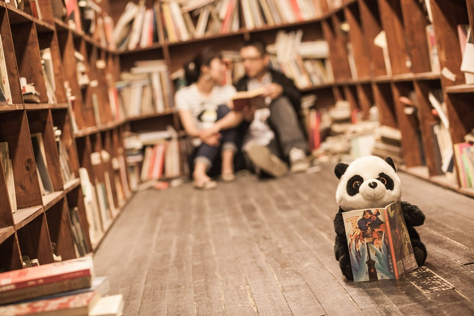 Book shelves and stuffed panda toy reading book, two people in background
