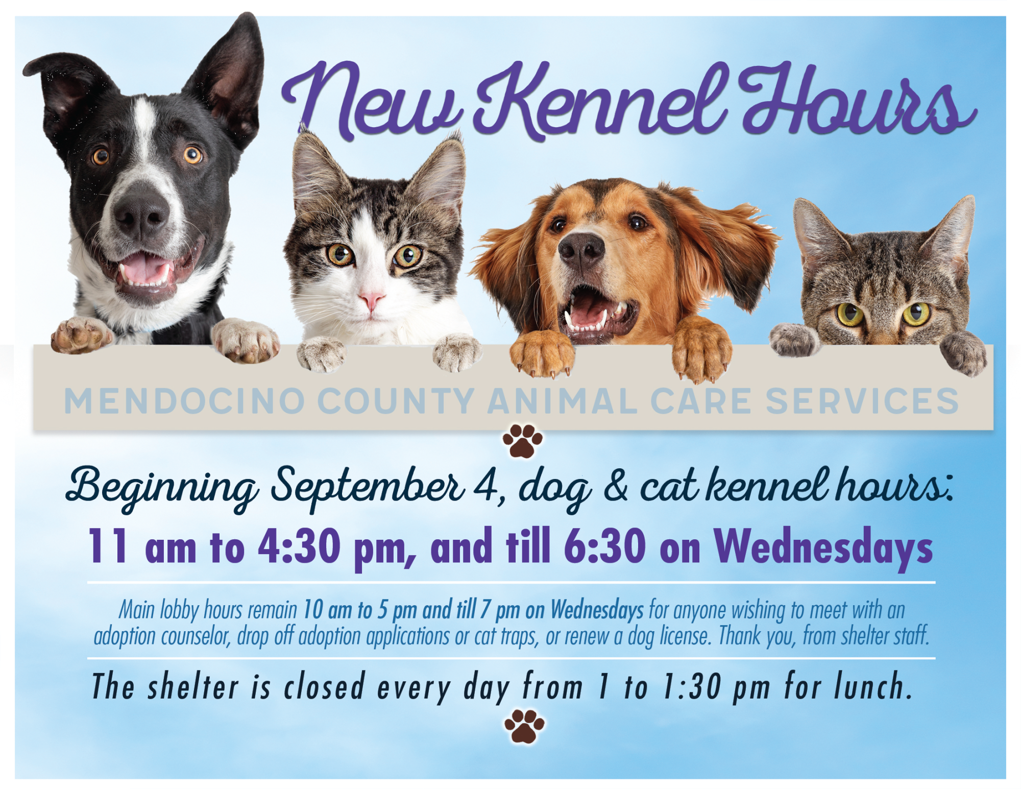 Sep 4th Kennel Hours